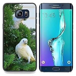 - Beautiful White Cocatoo Parrot - - Cubierta del caso de impacto con el patr??n Art Designs FOR Samsung Galaxy S6 Edge Plus Queen Pattern