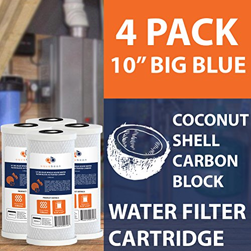 4 x 10 water filter - 1