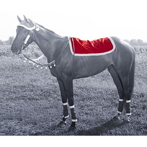 JT International Holiday Santa English Pad Cover