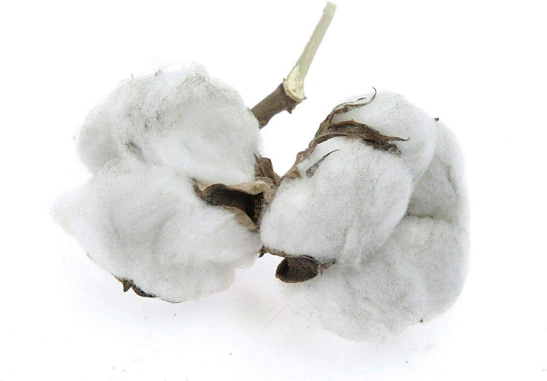Blanc Drap de lit blanc sans caoutchouc en coton lavable /à 95 /°C 2er Set 160x220 cm Amazinggirl Drap de lit sans /élastique en coton lavable /à 95 /°C 100 /% coton. 125 g//m/²