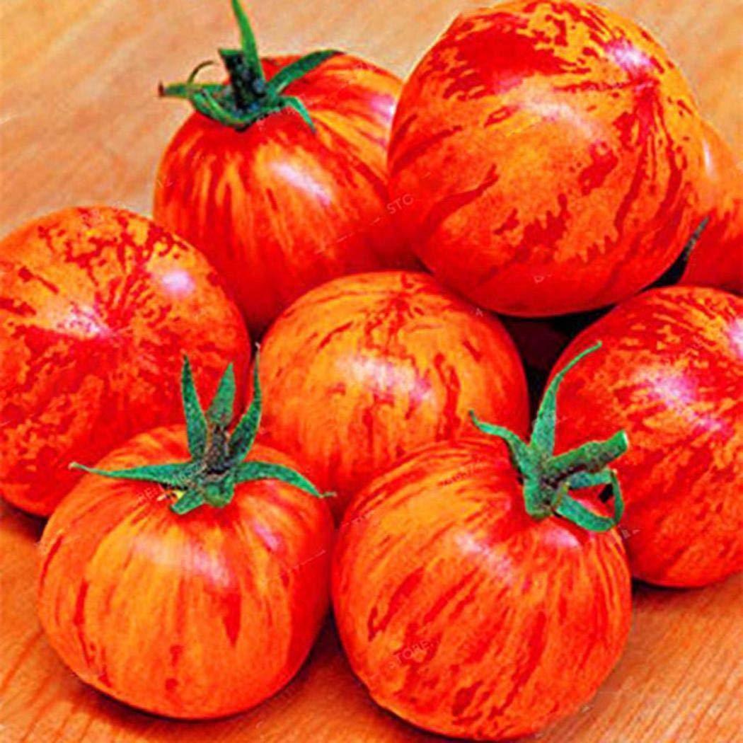 Organic Delicious Fruit Rarity Ornamental Vegetables Tomato Seeds Home Garden Balcony SummerRio 100Pcs Rare Tomato Seeds Seeds House