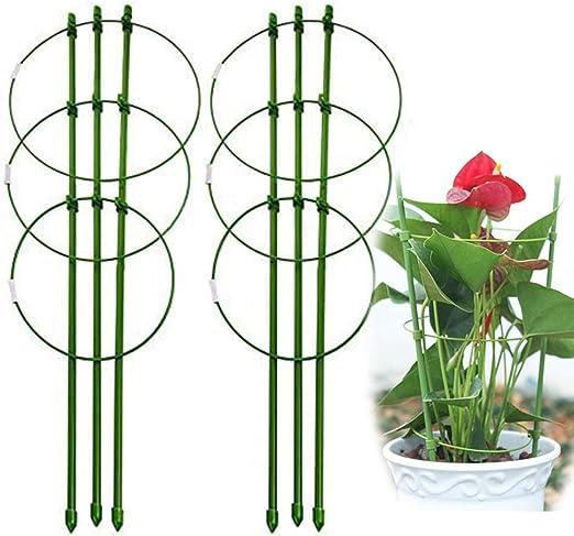Paquete de 2 anillos de soporte para plantas de jardín Flor de enrejado de jardín de gran tamaño Soporte de acero para escalada Vegtables&Flowers&Fruit Grow Cage con 3 anillos ajustables 60cm/24in: Amazon.es: