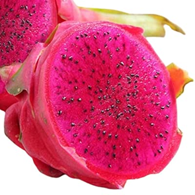 BLagenertJ Mixed Color Delicious Fruit Pitaya Seeds Home Garden Farm Hand Planting Seeds - 100 Pcs 100 pcs: Home & Kitchen