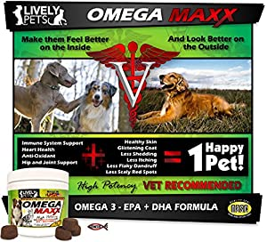 OMEGA MAXX - High Potency Omega 3 Fish Oil for Dogs and Cats, Prescription Strength EPA DHA Soft Chews - Dog Dry Skin Relief, Immune, Brain, Heart, Hip and Joint Health - Dog Skin and Coat Supplements