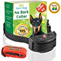 Neron Gold Pets No Bark Dog Collar For Bark Control | 7 Levels of Sensitivity | For Medium Large Or Small Dogs | No Harm Warning Beep & Shock Anti Bark Training Collar(Black) | Gift:Stylish Red Collar from Neron Gold
