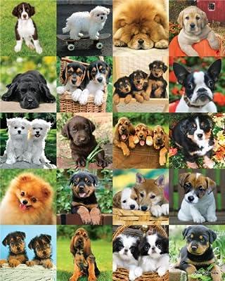 Andrews + Blaine Ltd Furry Friends - 500 Pc Puzzle