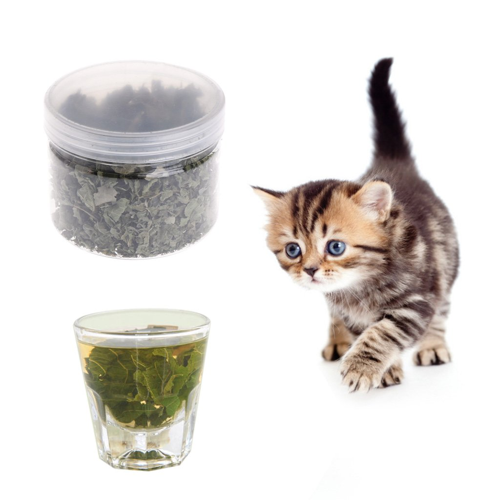 naturales silvervine hojas Cat Catnip getr ocknet Polygonum matatabi juguete sabor aperitivos: Amazon.es: Hogar
