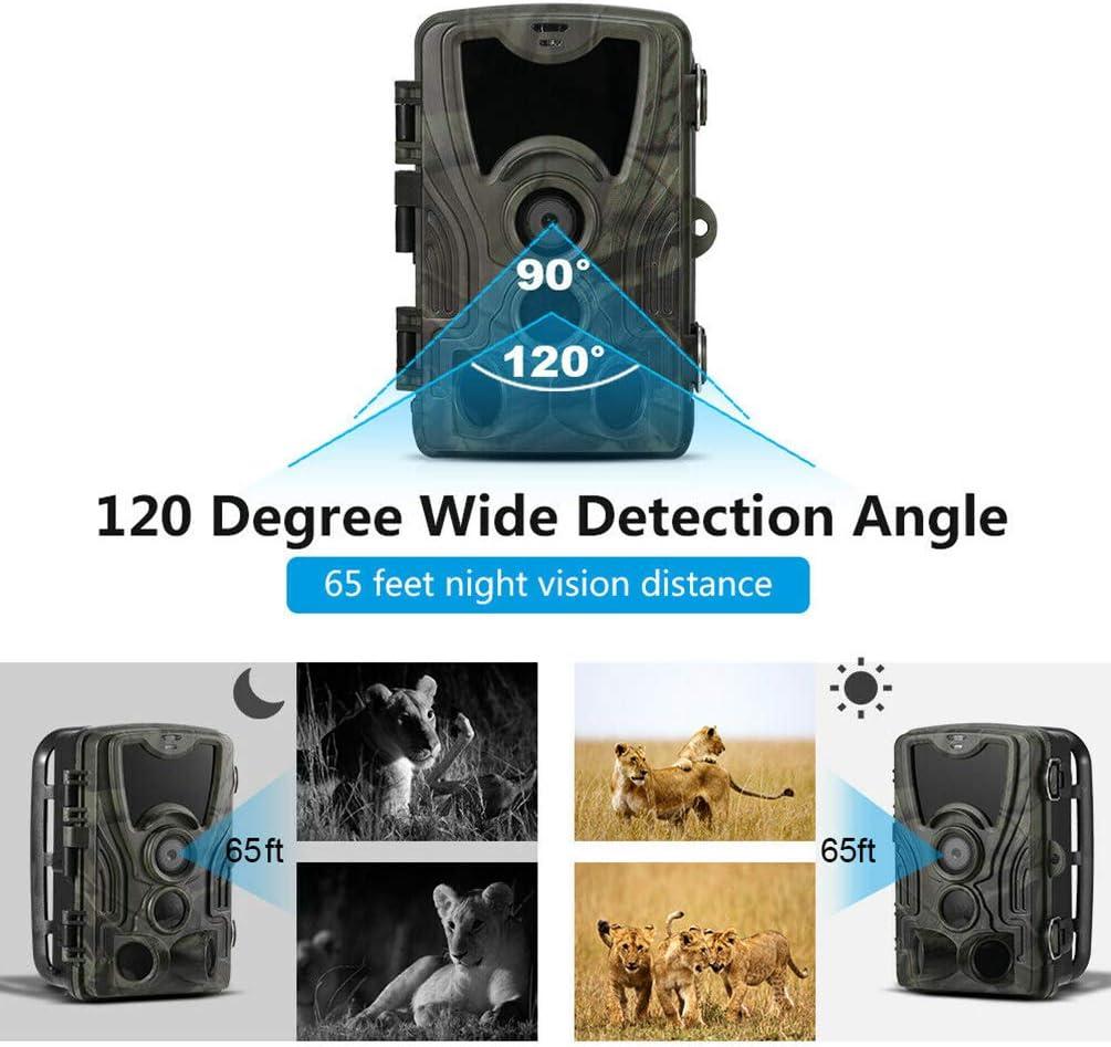NMJG HC801A Wildkamera Fotofalle 16MP 1080P Jagdkamera IP65 Nachtsicht /Überwachungskamera f/ür Jagd und Tierbeobachtung