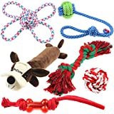Top 10 Best Dog Toys