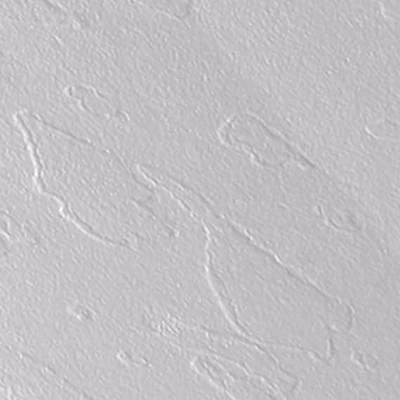 maier Plato ducha de piedra Eden Blanco Varios Tamaños: Amazon.es: Hogar