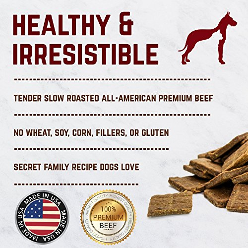 Gourmet Jerky Dog Square Treats - Slowly Roasted, Soft, & Yummy. Only Six Ingredients Made in the USA - Healthy Jerky Squares - 16 oz. Bag (Beef)