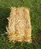Wheat Straw Bale Spring/Summer/Fall Theme Decoration