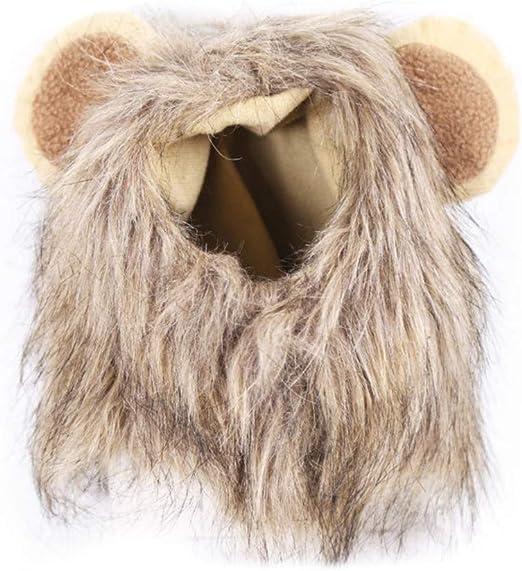 Youliy disfraz para mascota, peluca de melena de león, sombrero de ...