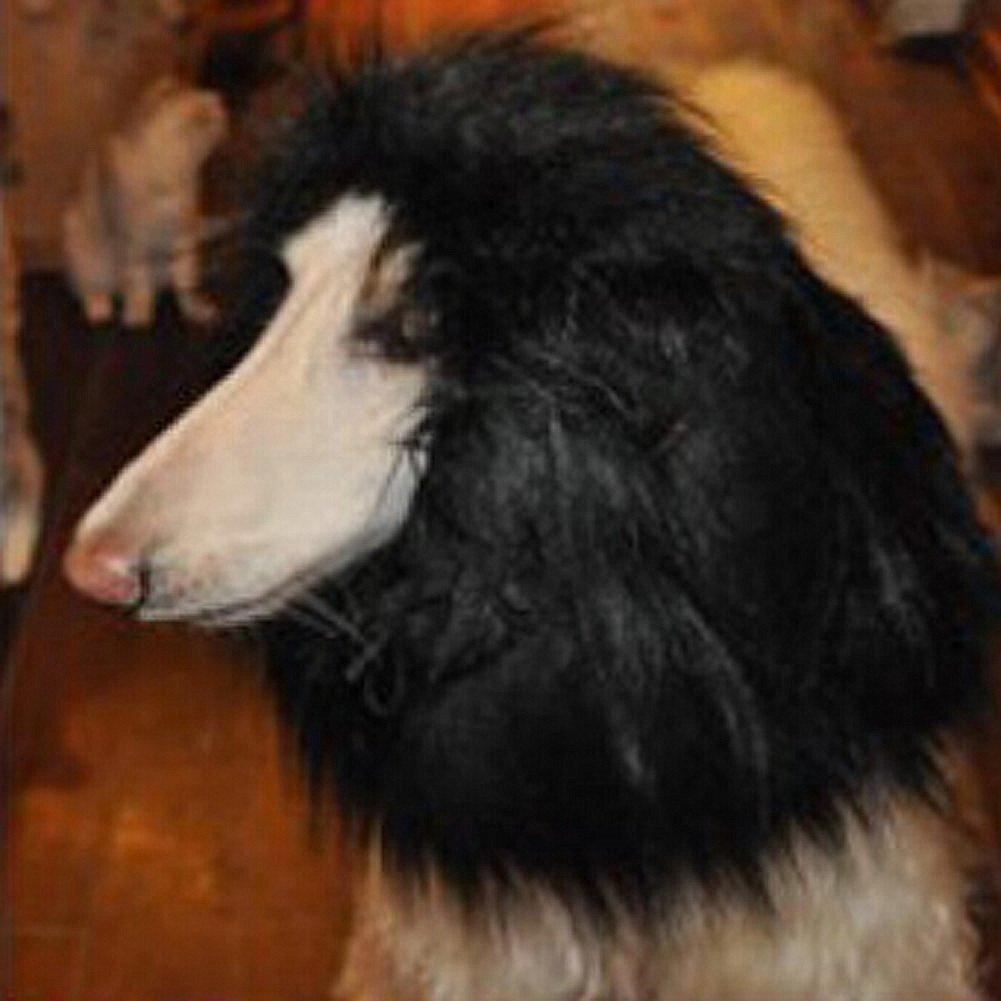 amazon com lion mane for dog pet costume fmji dog clothes lion