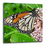 3dRose dpp_10930_2 Monarch Butterfly and Milkweed by Angelandspot-Wall Clock, 13 by 13-Inch For Sale