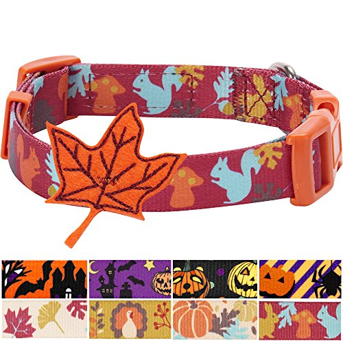 Blueberry Pet 8 Patterns Thanksgiving Fall Fun Enchanting Squirrel Designer Dog Collar with Maple, Small, Neck 12