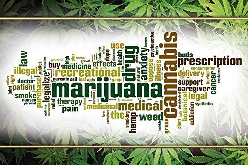Schatzmix Cartel de Chapa de Marijuana Cannabis: Amazon.es ...