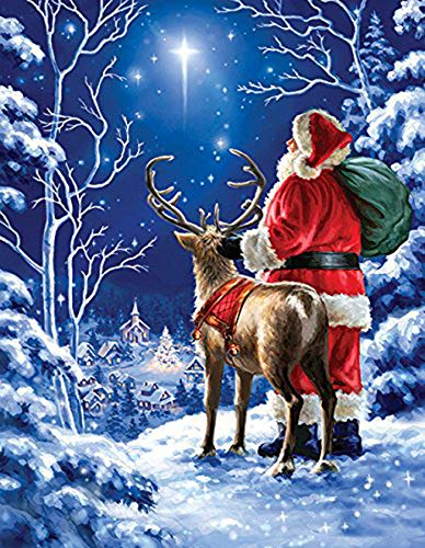 (TINMI ARTS 5D Diamond Painting Kits Full Drill for Christmas Gift DIY Cross Stitch Pattern Crystal Rhinestone Embroidery Kits Wall Sticker[16