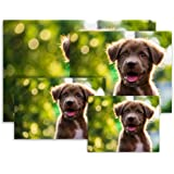 Photo Prints – Luster – Large Size (12x18)
