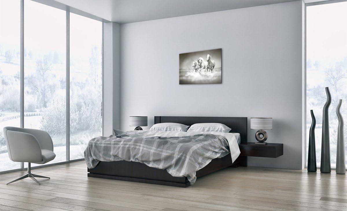 Un /él/ément prete a Suspendre D/écoration Tableaux pour la Mur Motif Moderne 2389 AA70x50-2389 Image sur Toile Impression sur Toile 70x50cm Pret a accrocher encadr/ée