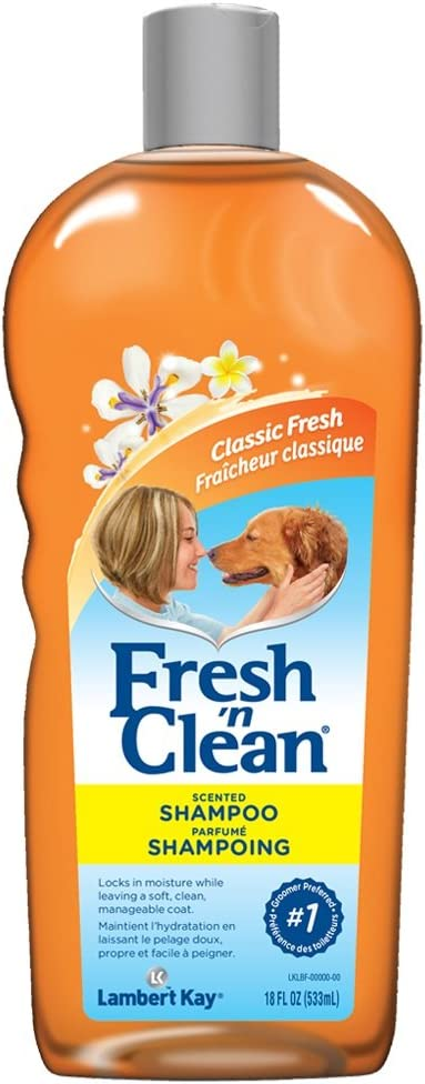 Fresh 'n CleanScented Shampoo