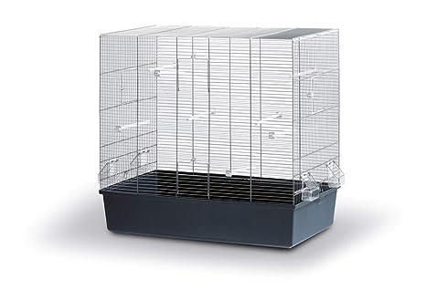 Jaula de pájaros ROSE, 80 x 45 x 75 cm: Amazon.es: Productos para ...