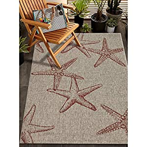 61V0ZfHQUYL._SS300_ Starfish Area Rugs For Sale