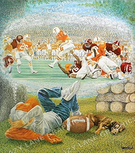 Artist Steve Ford Tennessee Volunteers Rocky Top Art Print