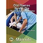 Old Flames Never Die (Destroying Celie Bellamy Book 3)