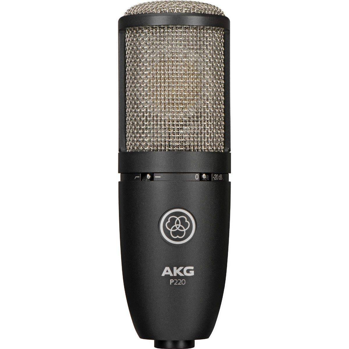 Project Studio P220 Large Diaphragm Condenser Microphone (Black) (Renewed)