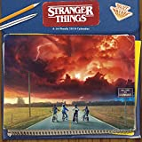 Book cover from 2019 Stranger Things Wall Calendar by Trends International