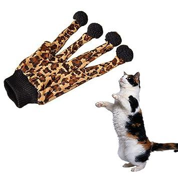 Xrten Juguete Interactivo para Gatos Gatito, Guantes Divertidos para Jugar con los Gatos: Amazon.es: Electrónica