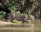 Animal Expressions