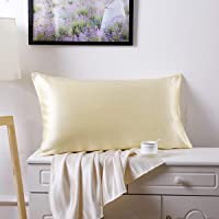 Silk Pillowcase for Hair and Skin 100% Mulberry Silk Bed Pillowcase with Hidden Zipper (Standard, Beige)