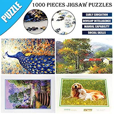 ERIUAES Puzzles for Adults/Kids 1000 Piece, 75 x 50cm Landscape Puzzle Game Interesting Toys Jigsaw Puzzle (I): Toys & Games