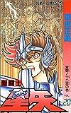 Saint Seiya Vol. 20 (Seinto Seiya) (in Japanese)
