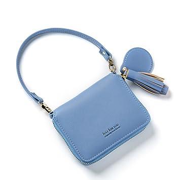 Cartera para Mujer con Flecos, pequeña y Sencilla, con imitación de Piel, con Monedero Corto, Monedero, Bolso de teléfono, Embrague - Azul: Amazon.es: ...