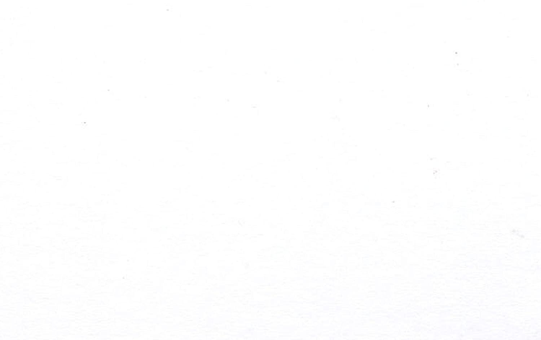 Goldline GMB119Z Blister di Cartoni Laminati, 84.2 x 59.4 x 1.4 cm, Bianco Clairefontaine