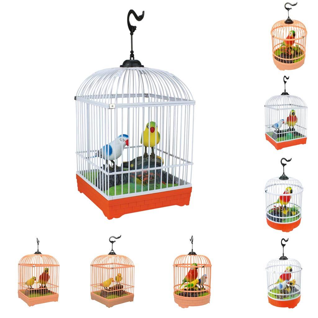 F Fityle - Jaula para canto eléctrico y pájaro jaula para ...