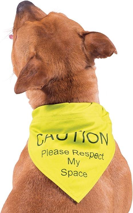 Medium Space Dogs Dog Bandana