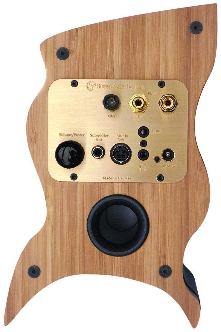 Serene Audio talismán con altavoces de escritorio, bambú y piel: Amazon.es: Electrónica