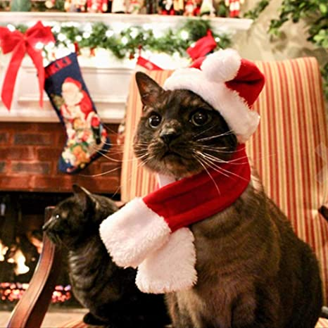 Mallalah Traje de Mascota Cat Santa Hat Bufanda Set para Gatos y ...
