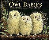 Owl Babies Big Book, Martin Waddell, 0763612839