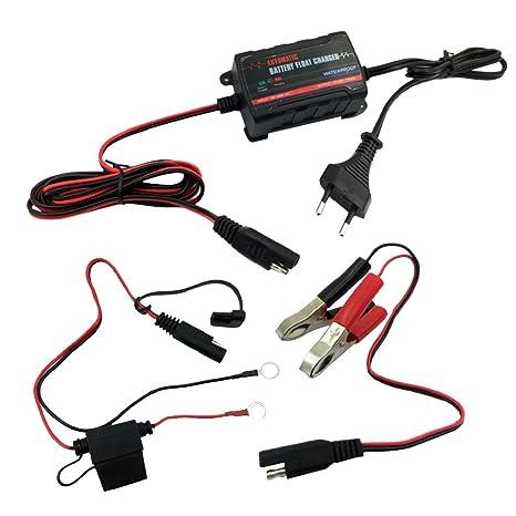 Gazechimp Cargador de Flotador de Batería con Disyuntor 6V 12V Ayuda a Detectar de Voltaje para