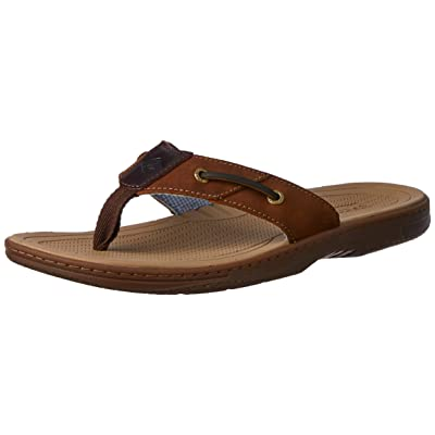 Sperry Men's Baitfish Thong Sandal | Sandals