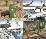 Hot and Cold, Cristiano Bertolucci, 1577685261
