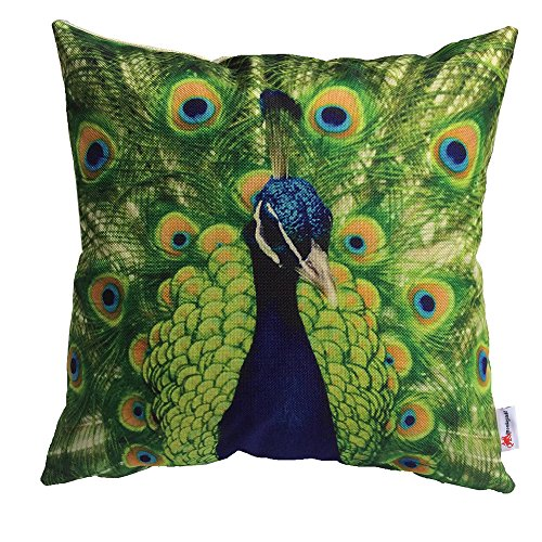 Monkeysell Peacock Pattern Vintage Cotton Linen Square Throw Pillow Case Decorative Cushion Cover Pillowcase Cushion Case for Sofa,Bed,Chair18 X 18 Inch (Glow In The Dark Eye Contacts)