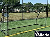 Vallerta Premier 12 X 6 Ft. AYSO Youth Regulation Size Soccer Goal w/Weatherproof 4mm Net. 50MM Diameter Black Powder Coated/Corrosion Resistant Frame. 12×6 Foot Practice Aid(1Net) ONE Year Warranty!