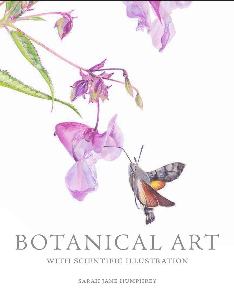 Botanical Art with Scientific Illustration pdf epub