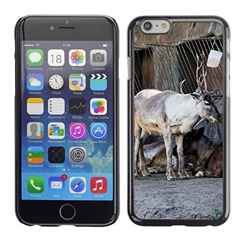 "Bild Hart Handy Schwarz Schutz Case Cover Schale Etui // M00134130 Reindeer Standgehäuse Tier // Apple iPhone 6 PLUS 5.5"""